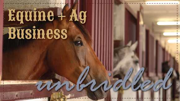 Business...unbridled
